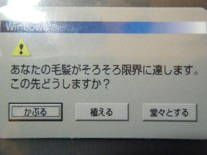 10022108.jpg
