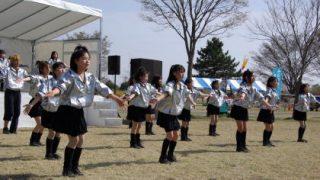 #8 閃光~ひかり~のveil (さくら祭り)