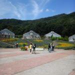 【告知】 10/11 とちぎ花センター公演